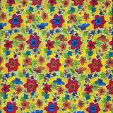 Cópia de Reps2008 Juliana002.jpg