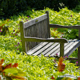 10-26-14 Dallas Arboretum - _IGP4304.JPG
