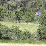 Sortida Reforestació 2007 - PICT1499.JPG
