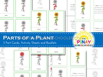 Montessori Inspired Parts of a Plant Nomenclature Cards and Definition Booklet