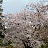 2014 Japan - Dag 8 - tom-SAM_0526-0031.JPG
