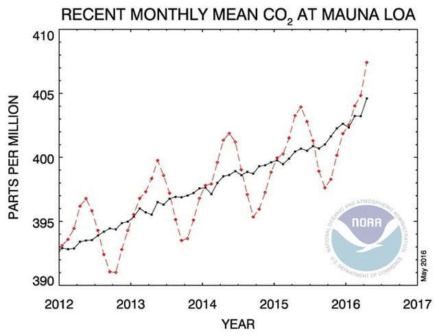In Hawaii in May 2016, the Mauna Loa station measurement of atmospheric carbon dioxide is sitting above 400 ppm and might never dip below it again. Graphic: National Oceanic and Atmospheric Administration