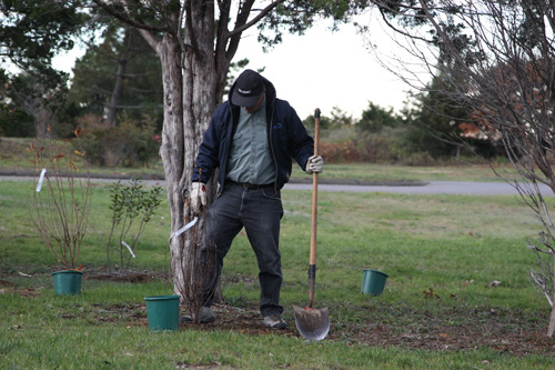 Hammo Fall Planting - Jim Murtagh - BC3G2520.jpg