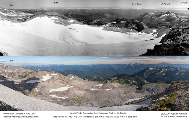 This vista, shot from a vantage point called Sugarloaf, looks down on the lower Paradise Valley and Stevens glaciers, now largely vanished. Above: U.S. Forest Service image from National Archives and Records Administration, Seattle, WA, shot in 1934. Below: The same vista in 2017, from John Marshall and The Nature Conservancy. Photo: USFS / John Marshall / The Nature Conservancy