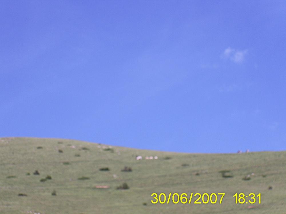 Taga 2007 - PIC_0055.JPG