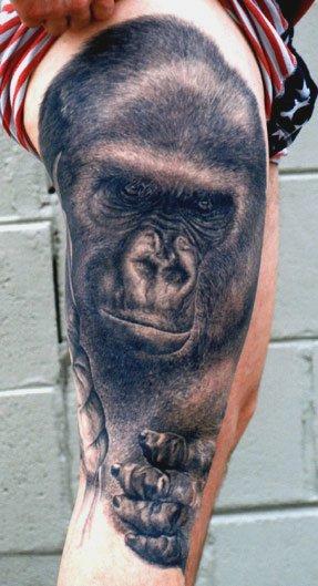 Gorilla #1