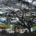 Plaza de Guacarí