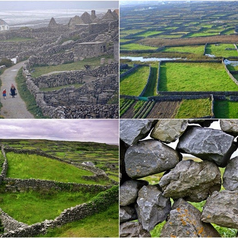 The Stone Walls of Ireland