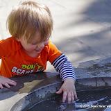 10-26-14 Dallas Arboretum - _IGP4341.JPG