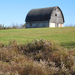 Gray Barn_Bloomer _WI_Jeannie E Roberts_Copyright_2014.JPG