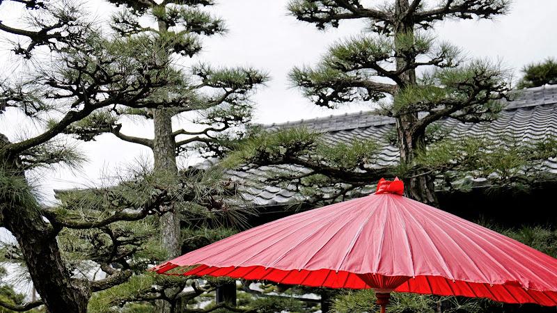 玉藻公園(高松城跡) 写真10
