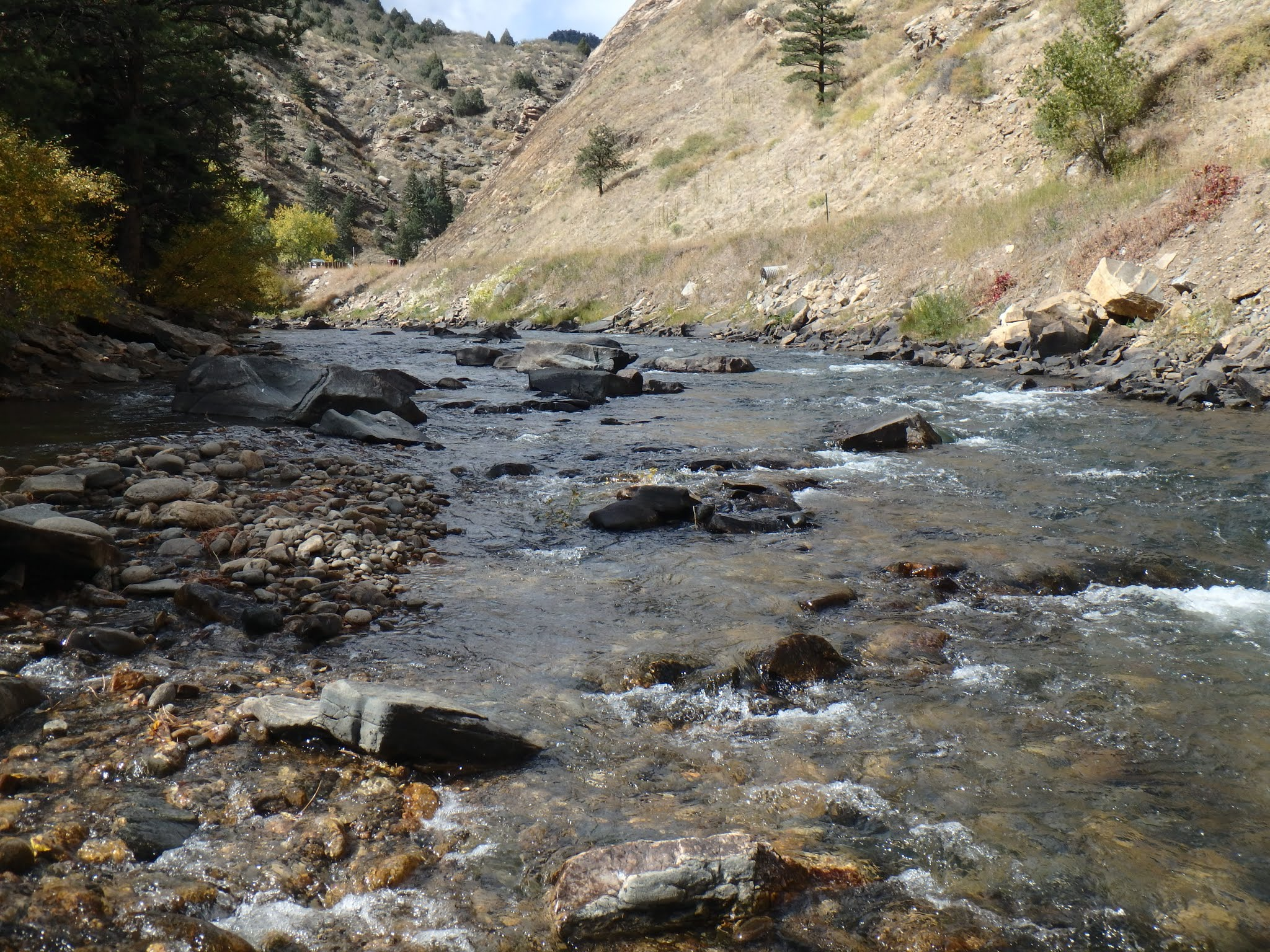 Clear creek dave weller 39 s fly fishing blog for Clear creek fishing