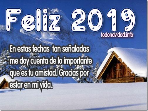 feliz 2019 5