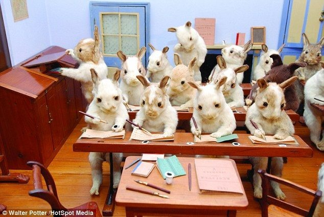 [bunnies+multiplying]