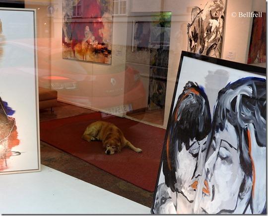 Galeriehund 1