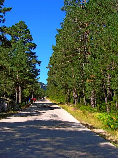 Un paseo por las nubes de Los Pirineos.. Los%2BPirineos%2B2014%2B031