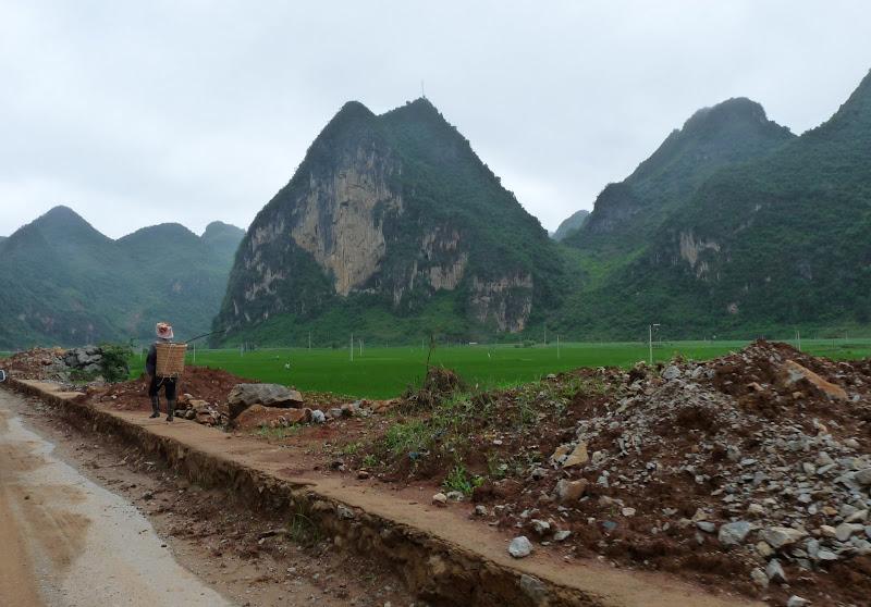 Chine.Yunnan Wen shan et BA MEI 1 - P1260863.JPG