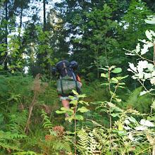 Taborjenje, Lahinja 2005 1. del - img_0743.jpg