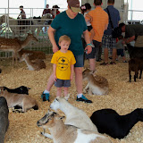 Fort Bend County Fair 2015 - 100_0177.JPG