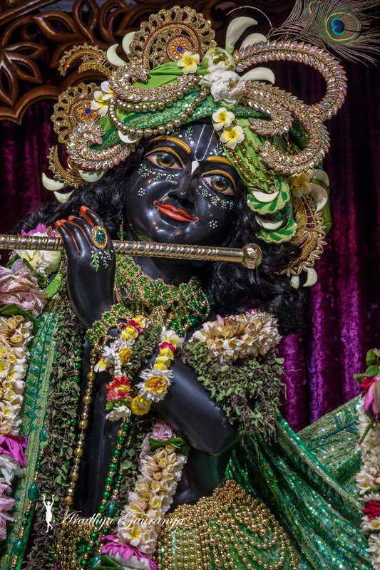 ISKCON Mayapur Deity Darshan 08 April 2016 (8)