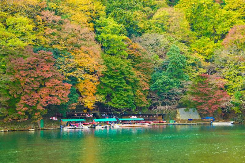 京都 嵐山 紅葉 写真1