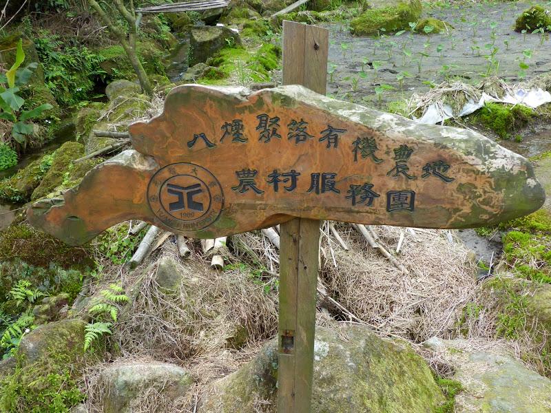 Yangminshan Shitoushan et Jinshan - P1040937.JPG