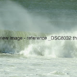 _DSC8032.thumb.jpg