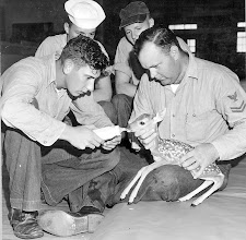 Photo: Easy does it...Exclaims Charlie Warren as he feeds the fawn that was found on the base. Holding the Fawn is Don Lavendar, SH 2 while N.L. Smith and W.H. Kuffler look on.