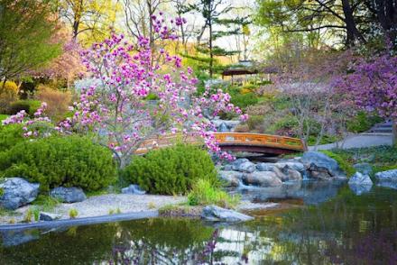 Η γοητεία και οι μυστικοί συμβολισμοί των κήπων στην Ιαπωνία
