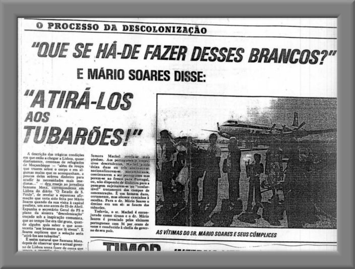 mariosoares_tubaroes-framed