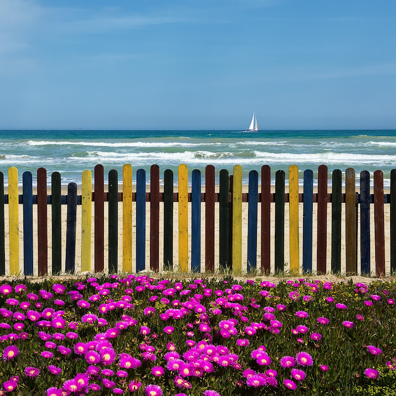 Giardino del mare di renzodid