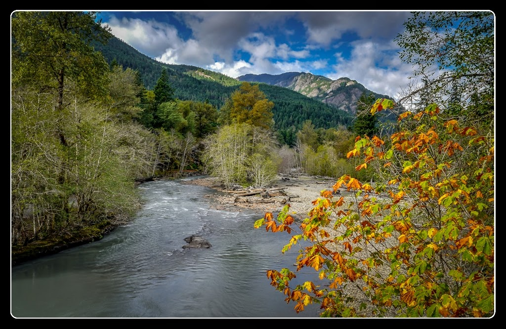 """Elwah River Fall colors"" by Tim Snyder - 2nd Place Digital General A"
