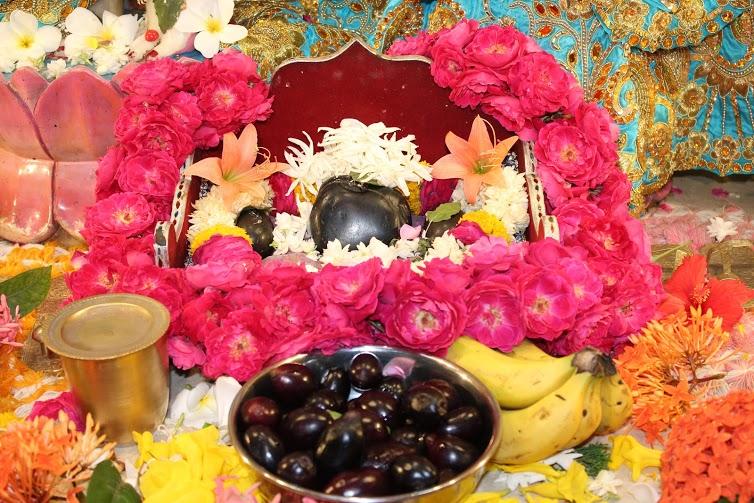 ISKCON Vallabh Vidyanagar Sringar Deity Darshan 23 April 2016 (5)