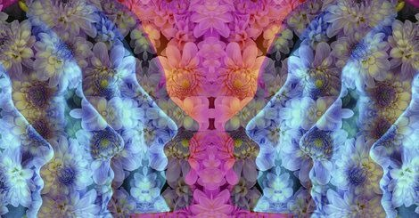 [flowers%5B3%5D]