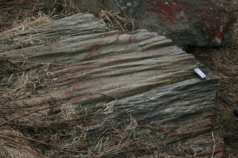 Kallioperägeologian kenttäkurssi, kevät 2012 - Kallioper%25C3%25A4kenttis%2B088.JPG