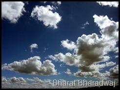 Bharat Bharadwaj