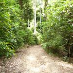 The Bar Trail (364034)