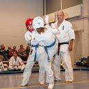 KarateGoes_0141.jpg