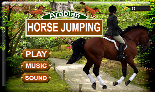 アラビア馬のジャンプ
