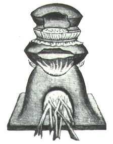 Late Mediaeval Indian Apparatus Similar To The Greek Kerotakis, Alchemical Apparatus