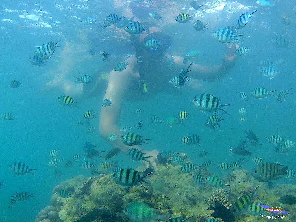 family trip pulau pari 090716 GoPro 21