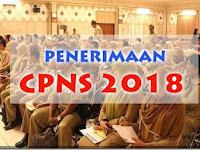Pemkab Rokan Hulu Ajukan 325 Formasi Untuk Penerimaan CPNS 2018