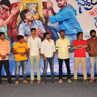 Bhadram Becareful Brother Movie Platinum Disc Function Pics