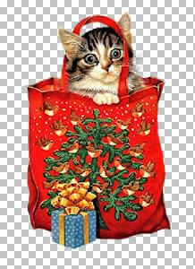 christmas cats~FBR 11-13-05     496 KB.jpg