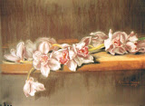 storczyk, sucha pastela, 32x50 cm