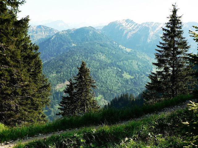 Ausbick zwischen Steineberg und Stuiben Allgäu