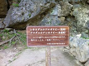 聖水の説明板