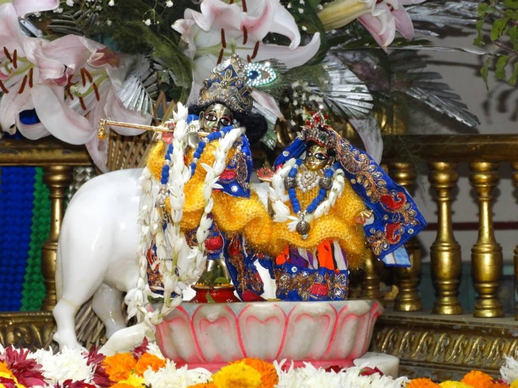 ISKCON Punjabi Bagh Deity Darshan 16 Dec 2015 (6)