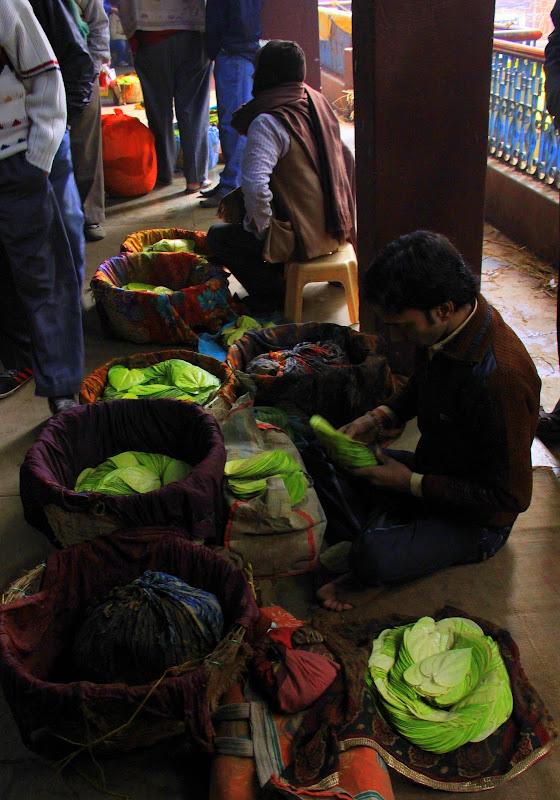 #varanasipaandariba #varanasipaanmarket #varanasimarket #varanasiwalk #travelbloggerindia