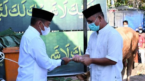 Pangdam I/BB Beserta PJU Qurbankan Sapi dan Kambing